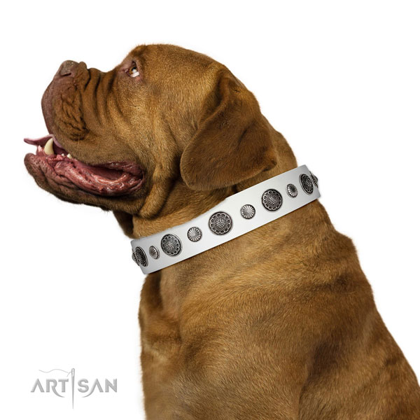 Significant leather dog collar with rust resistant D-ring