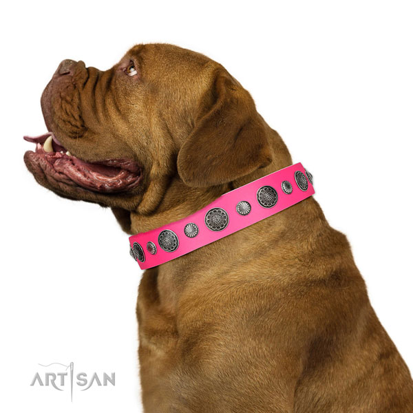 Decorated leather dog collar with rust-proof hardware