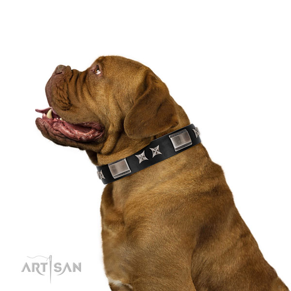 Handy use quality natural leather dog collar with adornments