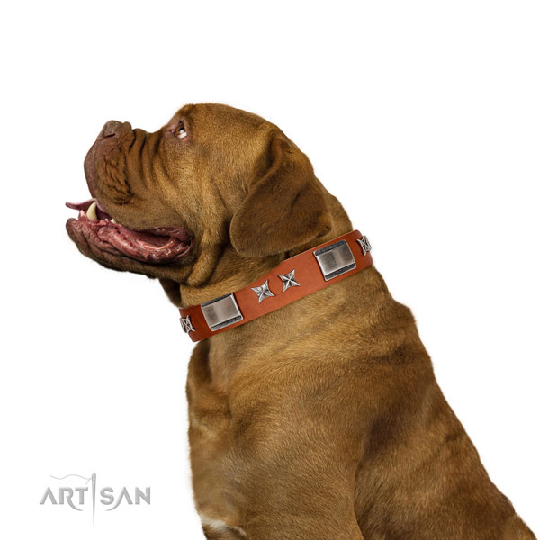 Comfy wearing high quality full grain natural leather dog collar with adornments