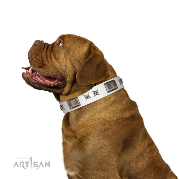 Easy to adjust collar of full grain genuine leather for your handsome canine