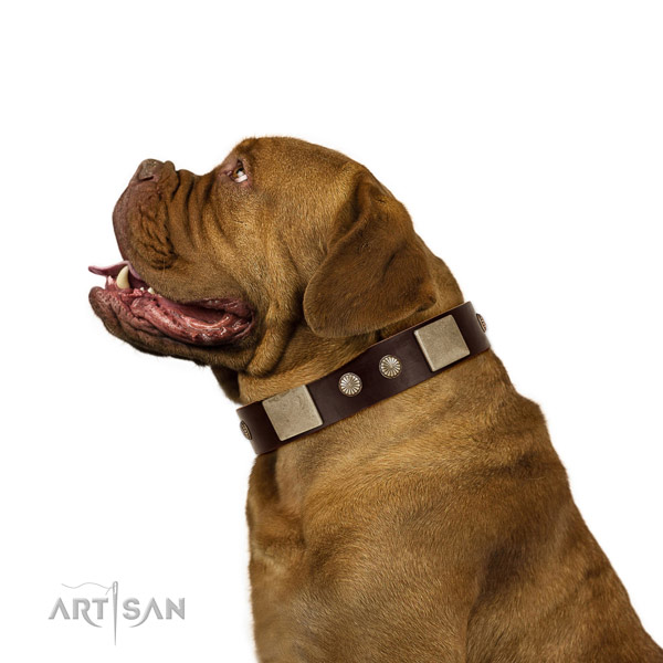 Strong fittings on full grain natural leather dog collar for comfortable wearing