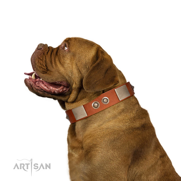 Reliable buckle on full grain natural leather dog collar for daily walking