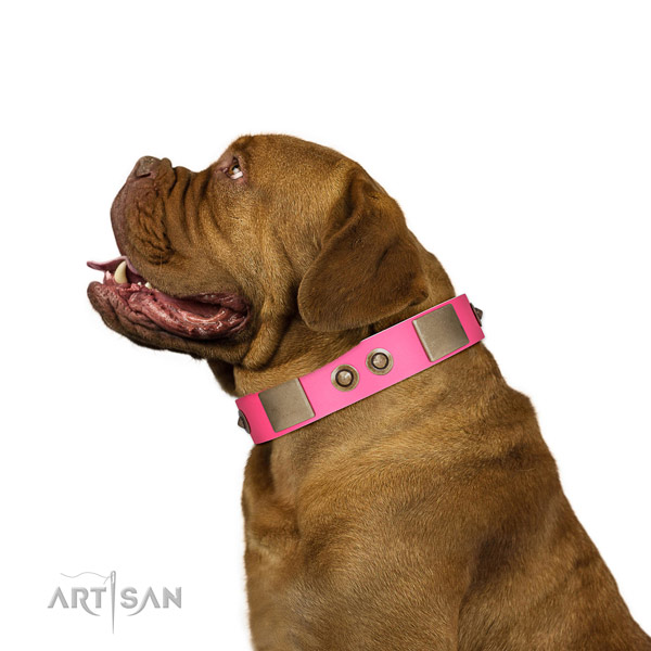 Daily walking dog collar of genuine leather with trendy embellishments