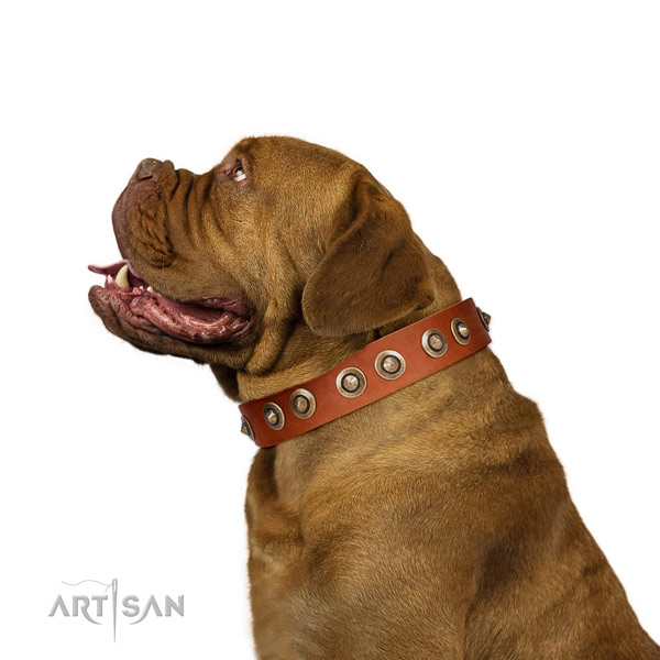 Comfortable wearing dog collar of natural leather with exquisite embellishments