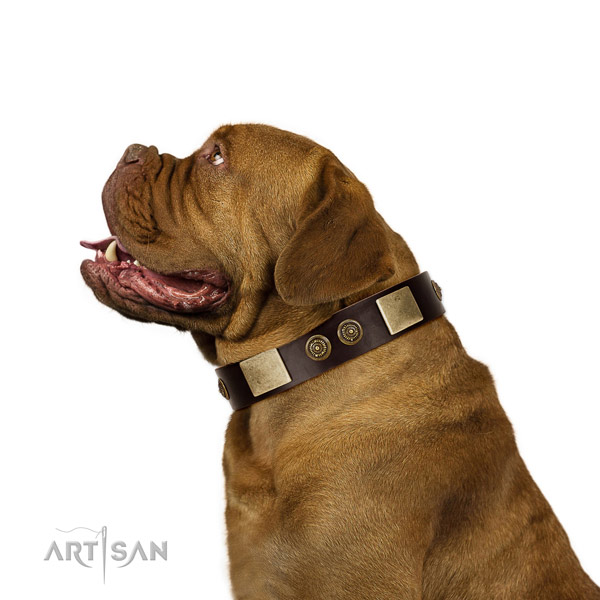 Everyday use dog collar of natural leather with unusual adornments
