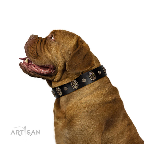 Stylish walking dog collar of natural leather with unusual decorations