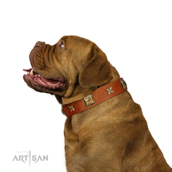 Adjustable leather dog collar with embellishments