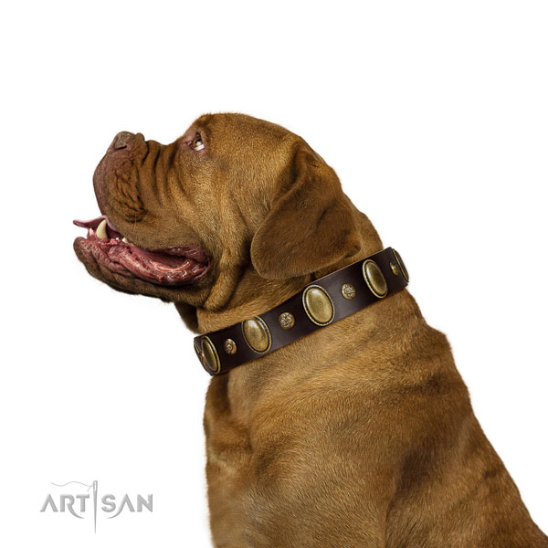 Full grain natural leather dog collar of reliable material with awesome studs