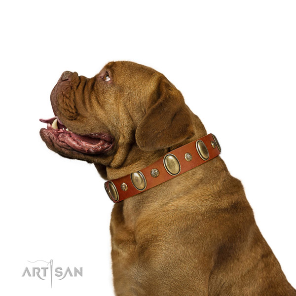 Stunning full grain natural leather dog collar with reliable buckle