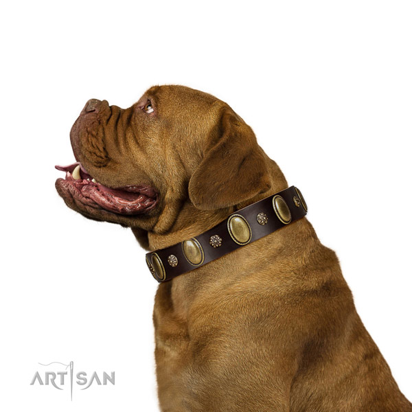 Fancy walking soft to touch full grain genuine leather dog collar with adornments