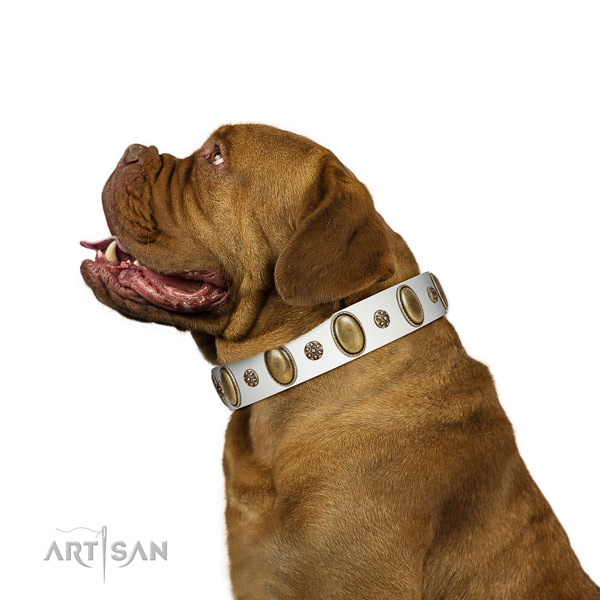 Walking quality genuine leather dog collar