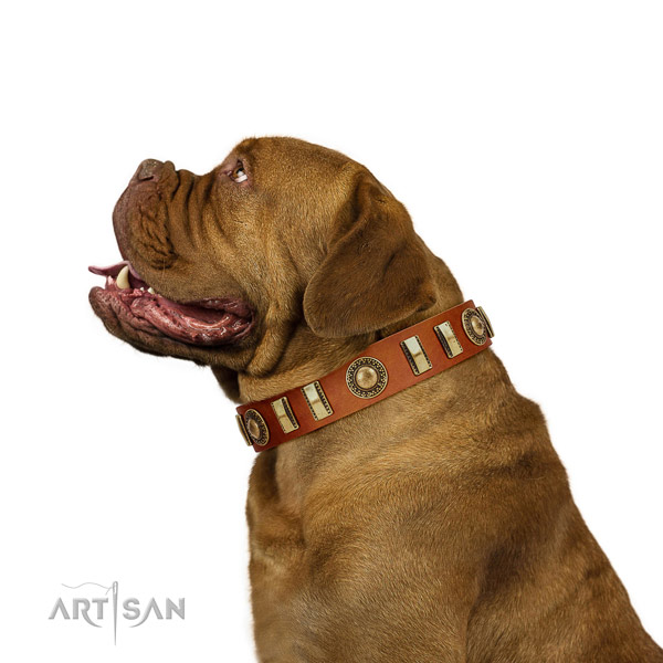 Impressive full grain natural leather dog collar with reliable D-ring