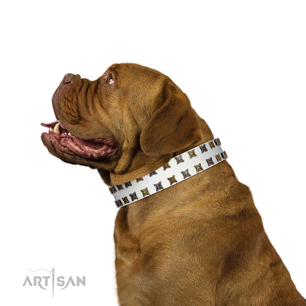 Best quality leather dog collar with embellishments for your doggie