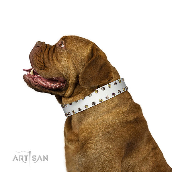 Unusual full grain natural leather dog collar with durable adornments