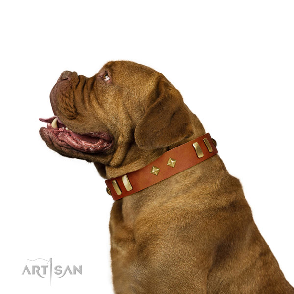 Everyday use gentle to touch leather dog collar with embellishments