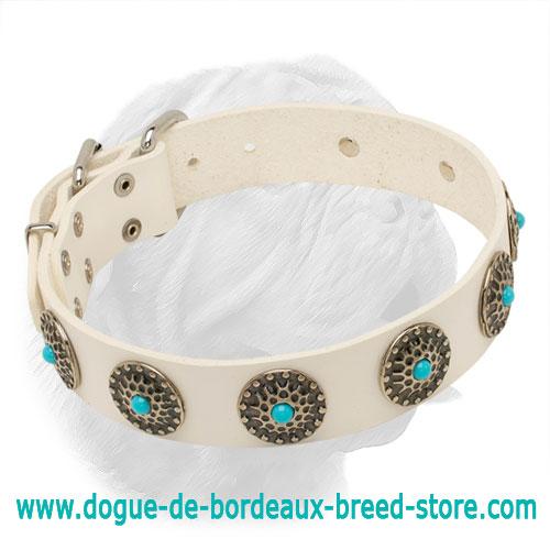 Adjustable White Leather Dogue De Bordeaux Collar C75w