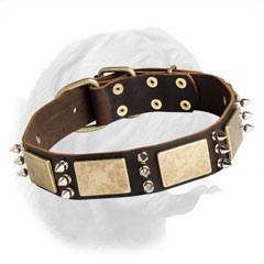 Walking Dog Collar made of Leather for Dogue de Bordeaux