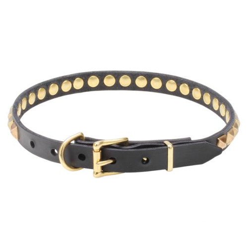 Leather dog collar with sturdy buckle and D-ring