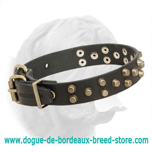 Studded Luxurious Dogue De Bordeaux Collar C36 1034