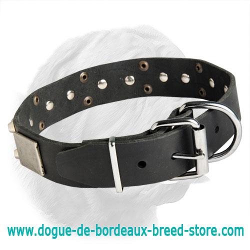 Magic Design Awesome Dogue De Bordeaux Collar C85n 1034