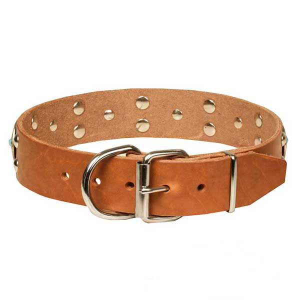 Marvelous tan leather dog collar with chrome plated adornment