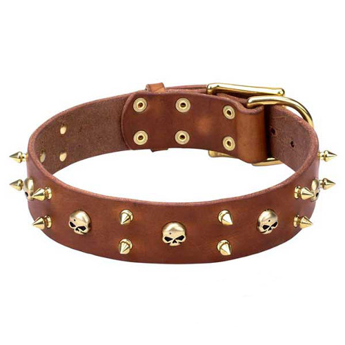 Marvellous leather dog collar with riveted decorations