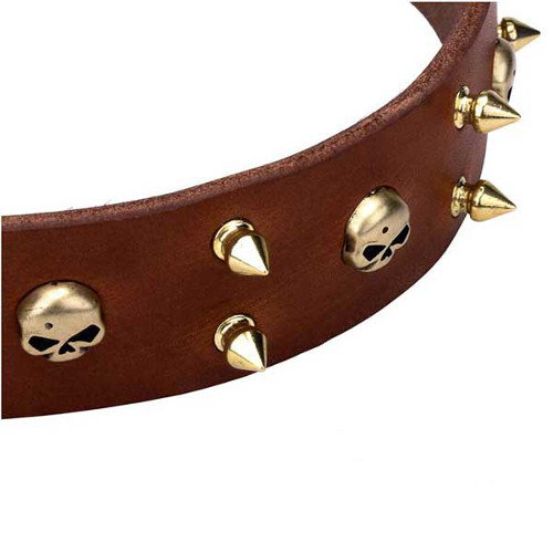 Dependable dog collar with skulls and spikes