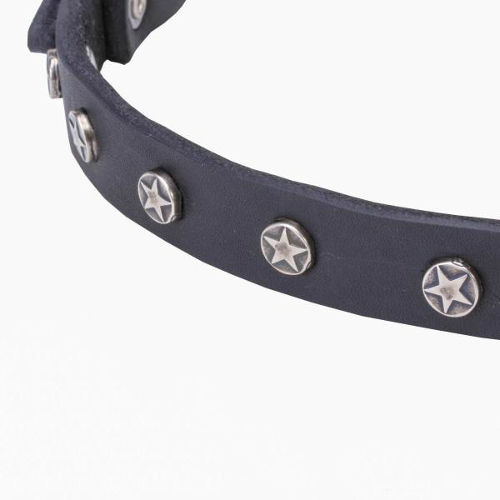 Top-notch leather dog collar with reliably fixed nickel decorations