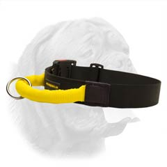 Extra Wide Nylon Collar for Better Control over your Dogue de Bordeaux During Training and Walking