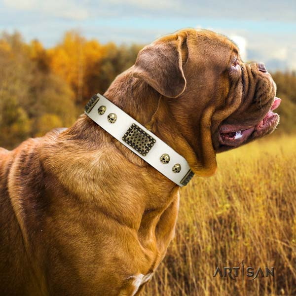 Dogue de Bordeaux fashionable full grain leather collar for comfortable wearing