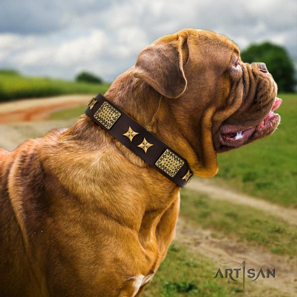 Dogue de Bordeaux inimitable natural genuine leather collar for basic training