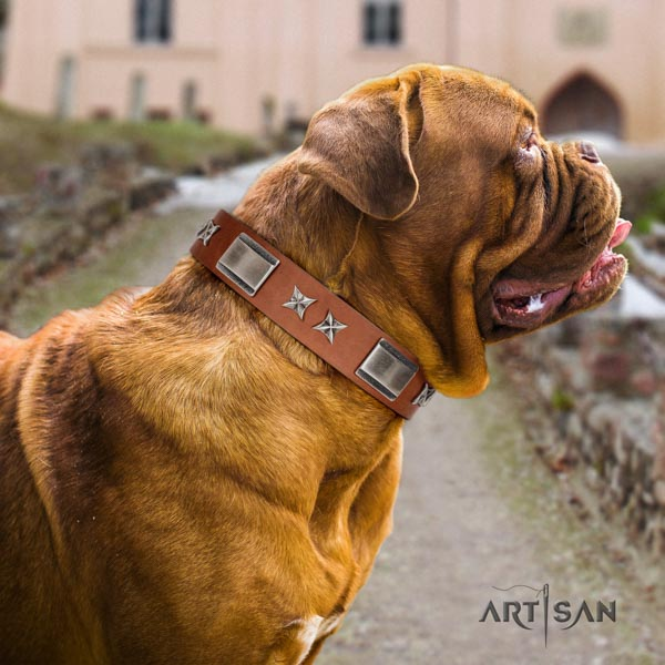 Dogue de Bordeaux impressive full grain natural leather collar for comfortable wearing