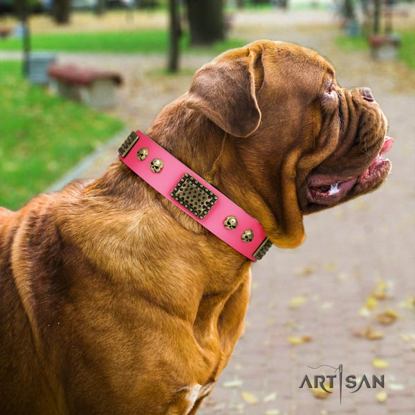Dogue de Bordeaux inimitable full grain genuine leather collar for everyday use