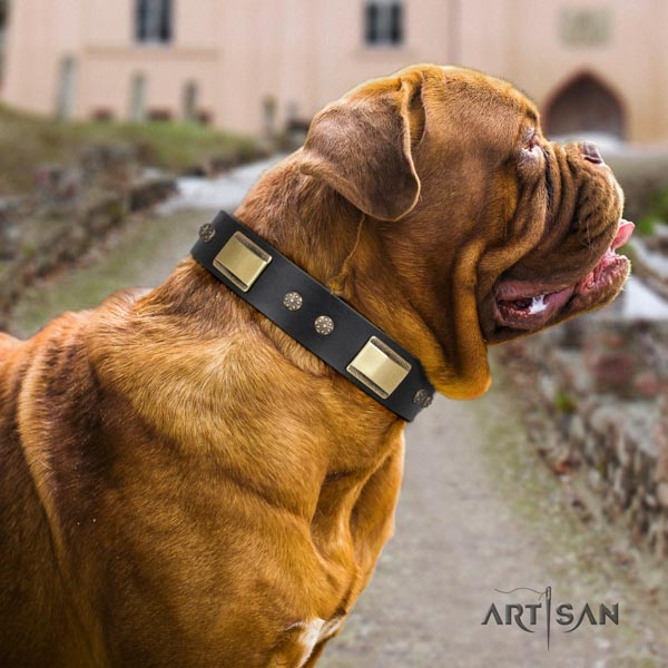 Dogue de Bordeaux inimitable full grain natural leather collar for comfy wearing