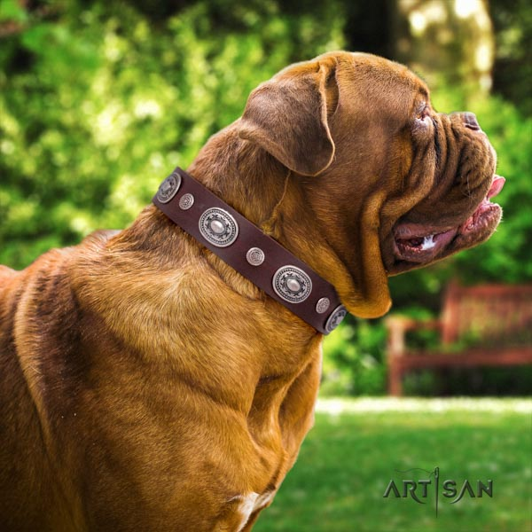 Dogue de Bordeaux top notch genuine leather collar for daily walking