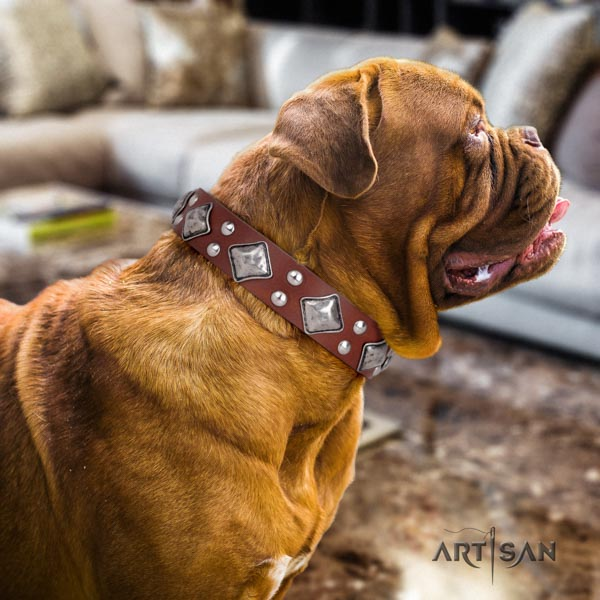 Dogue de Bordeaux extraordinary genuine leather collar for comfy wearing