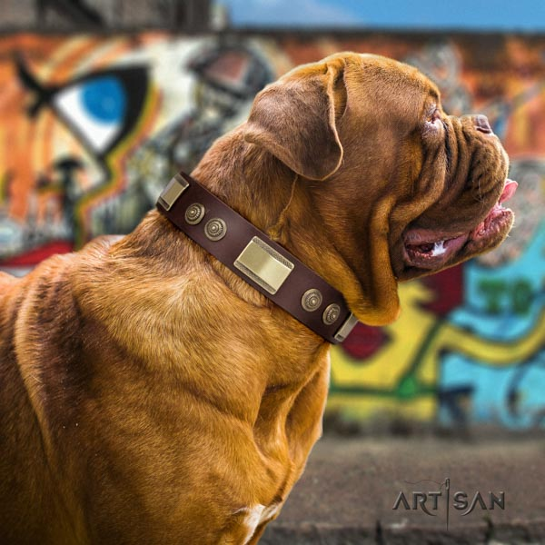 Dogue de Bordeaux designer full grain natural leather collar for stylish walking
