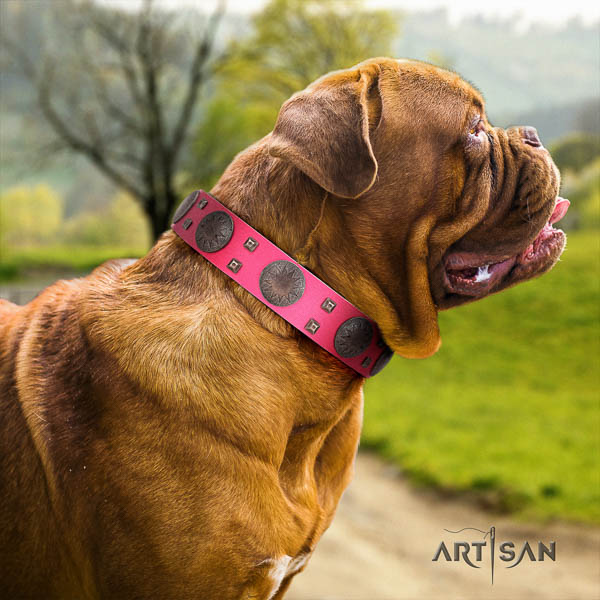 Dogue de Bordeaux stylish full grain genuine leather dog collar