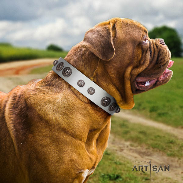 Dogue de Bordeaux dog collar of exquisite quality leather for basic training