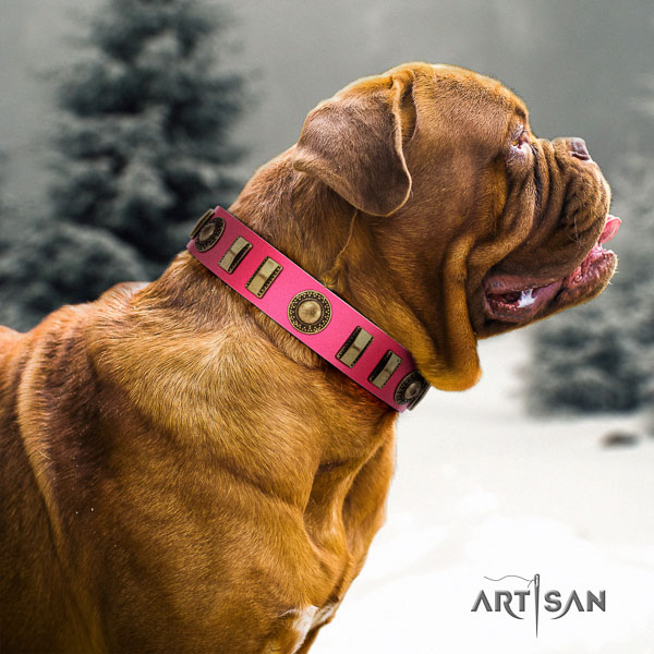 Dogue de Bordeaux walking dog collar of flexible natural leather