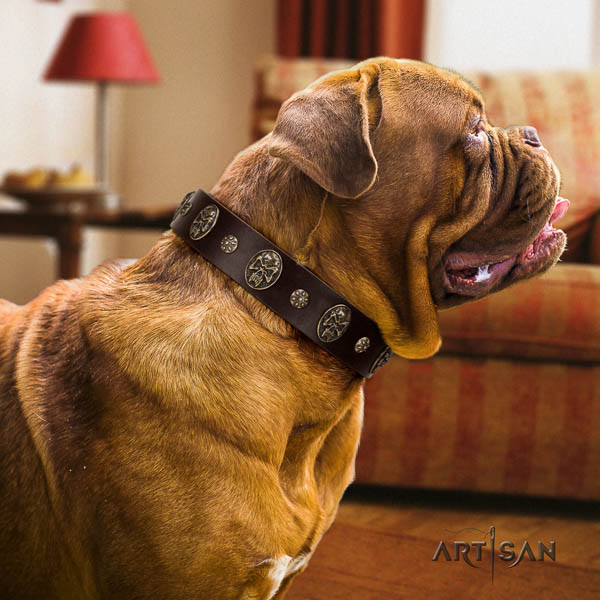 Dogue de Bordeaux basic training dog collar of designer leather