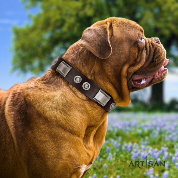 Dogue de Bordeaux inimitable leather collar for comfy wearing