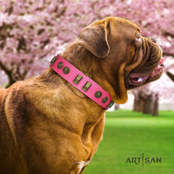 Dogue de Bordeaux stylish design leather collar for comfortable wearing