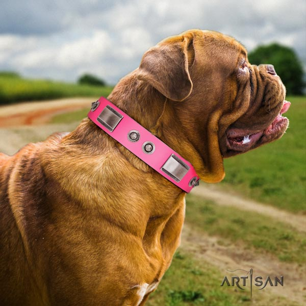 Dogue de Bordeaux stylish full grain genuine leather collar for everyday use