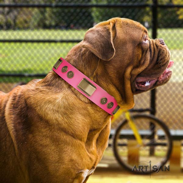 Dogue de Bordeaux exquisite full grain genuine leather collar for handy use