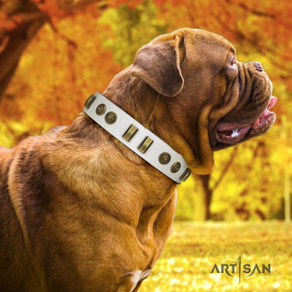 Dogue de Bordeaux extraordinary full grain genuine leather collar for comfortable wearing