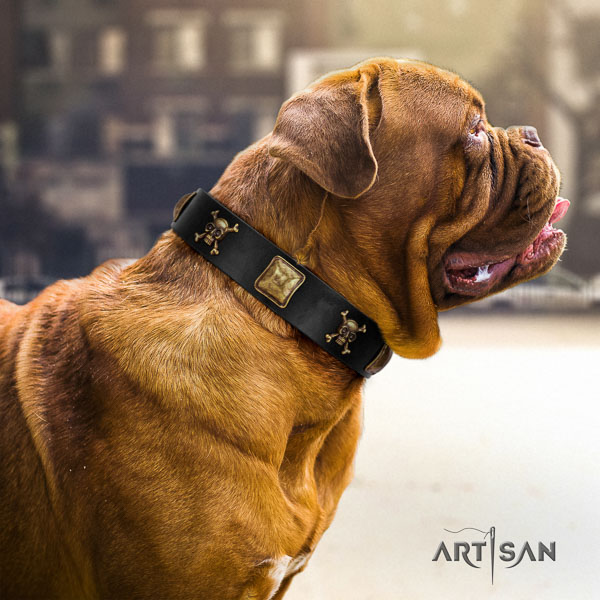 Dogue de Bordeaux daily use dog collar of soft natural leather