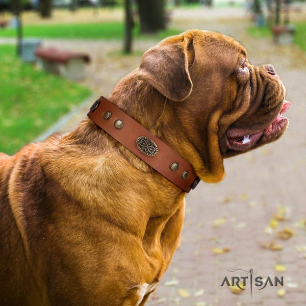 Dogue de Bordeaux remarkable full grain natural leather collar for handy use