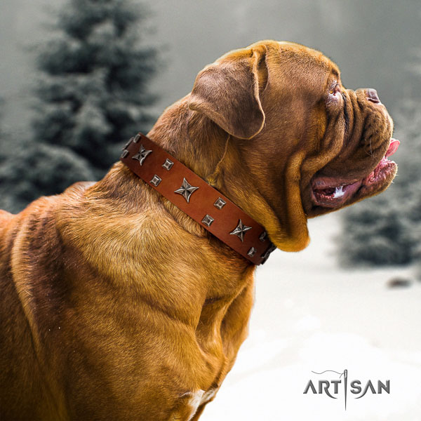 Dogue de Bordeaux stylish walking dog collar of top notch quality natural leather